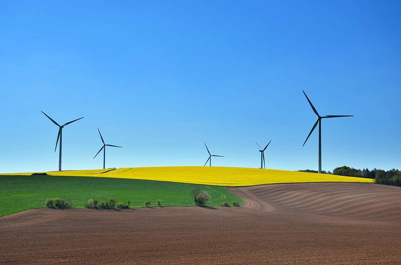 Définition et limites de la croissance verte